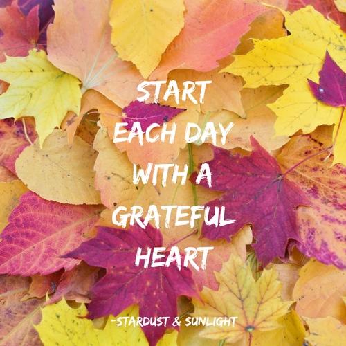 Day 33- gratitude.jpg