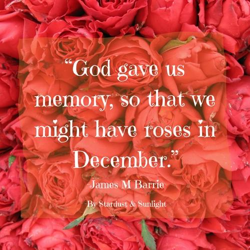 day 52- roses in december