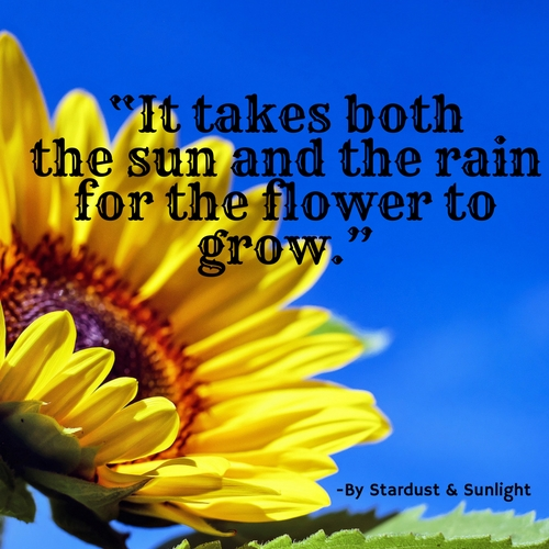 Day 55- Sun & Rain for the flower.jpg