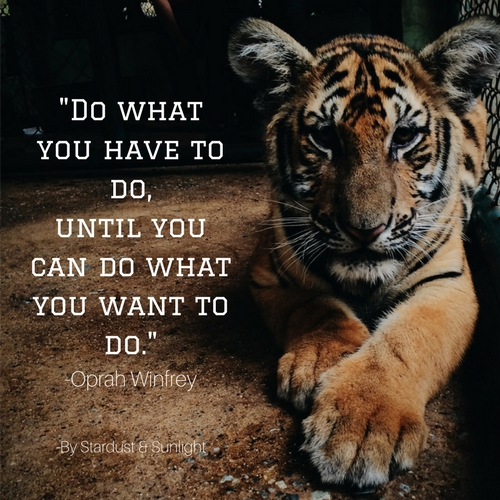 Day 56- Do what you have to do, until you can do what you want to do.jpg